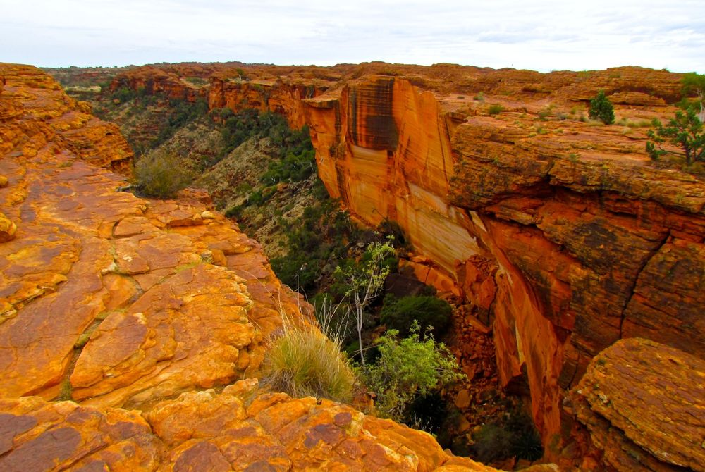Kings Canyon, Outback