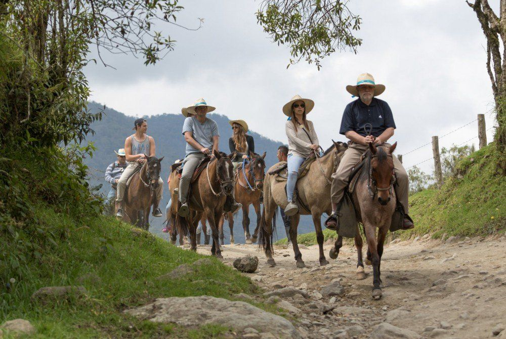 Valle de Cocora, Colombia