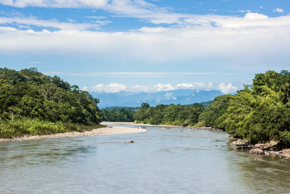 De Ecuadoriaanse Amazone