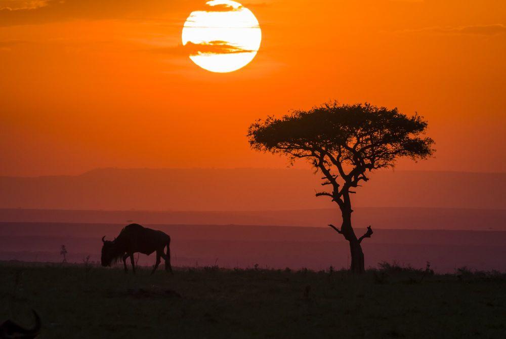 7 zonsondergangen om bij weg te dromen
