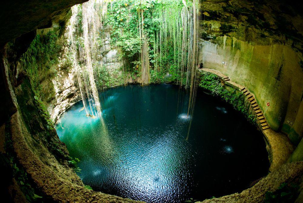 De cenotes van Yucatán (Mexico)