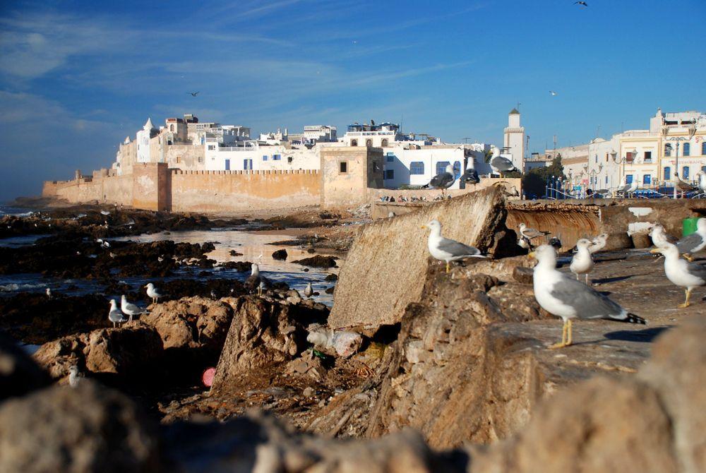 4 Werelderfgoederen in en rondom Marrakech