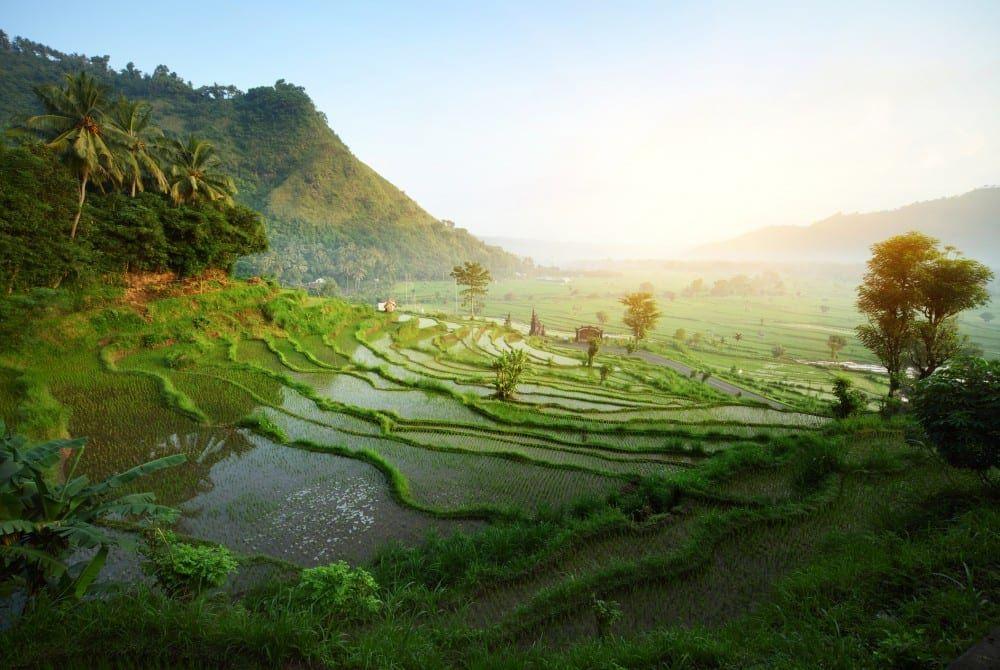 7 absolute must-sees op Bali