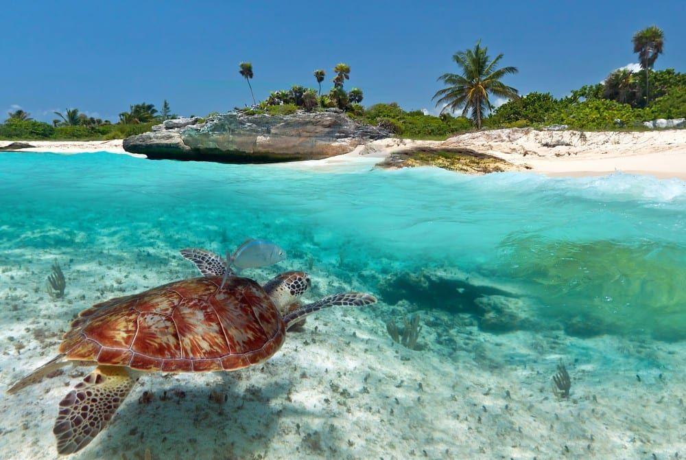 7x De mooiste stranden van Mexico