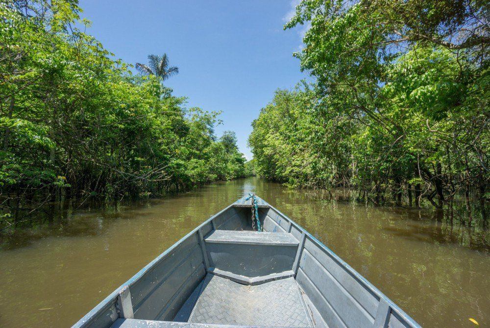 Must-do bij een rondreis Brazilië: ga de Amazone in!