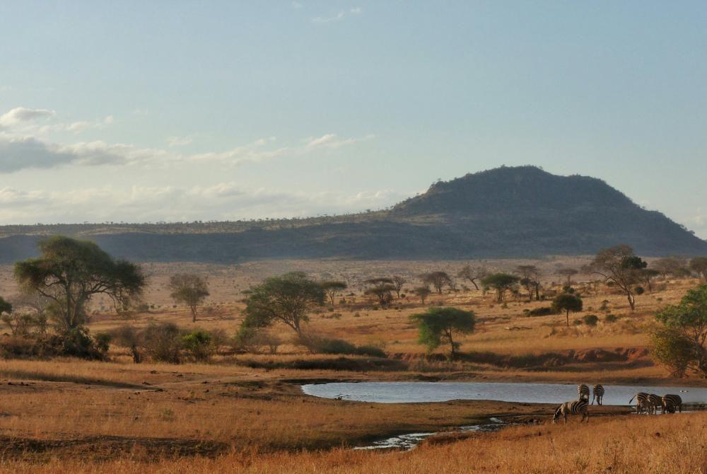 Dit Kenia filmpje is werkelijk fantastisch