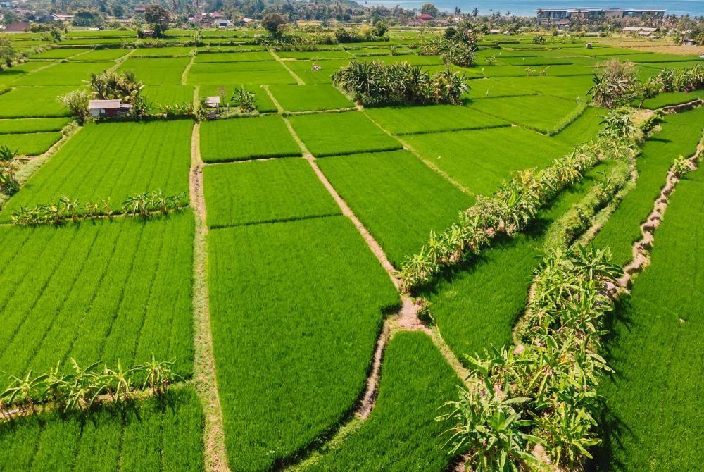 VIDEO: Dé top 10 must-see plekken op Bali