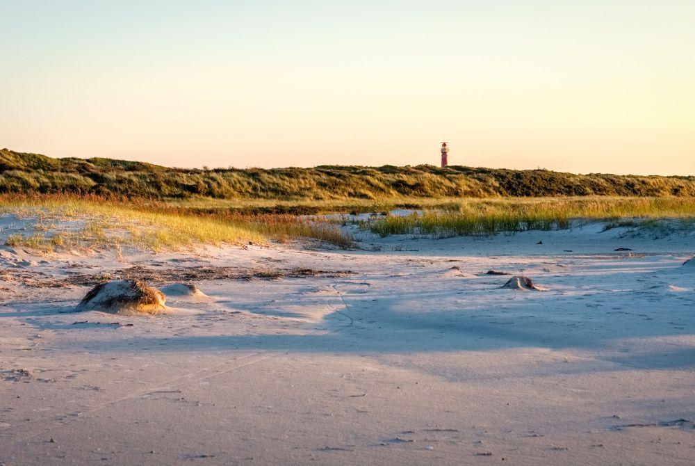 10x Fantastisch mooie natuurgebieden in Nederland