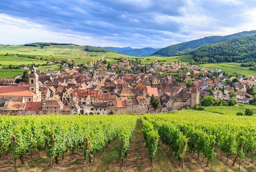 De Elzas wijnroute: Ontdek de mooiste plekken + onze tips