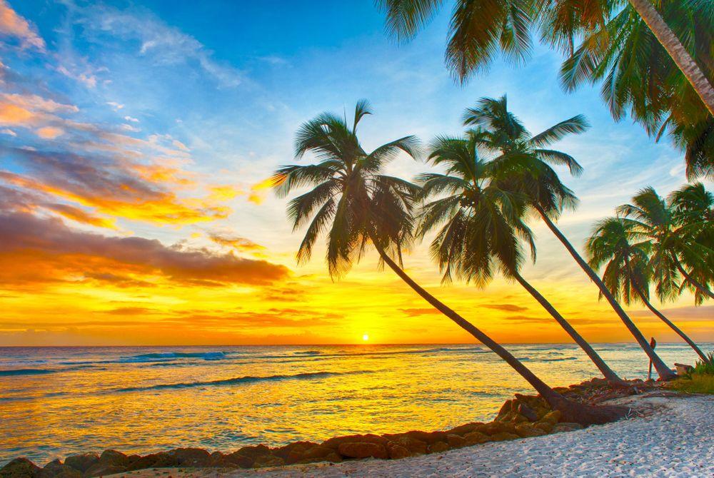 Duurzaam genieten op Barbados