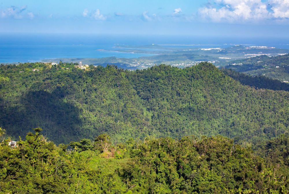 Puerto Rico's eco-parken