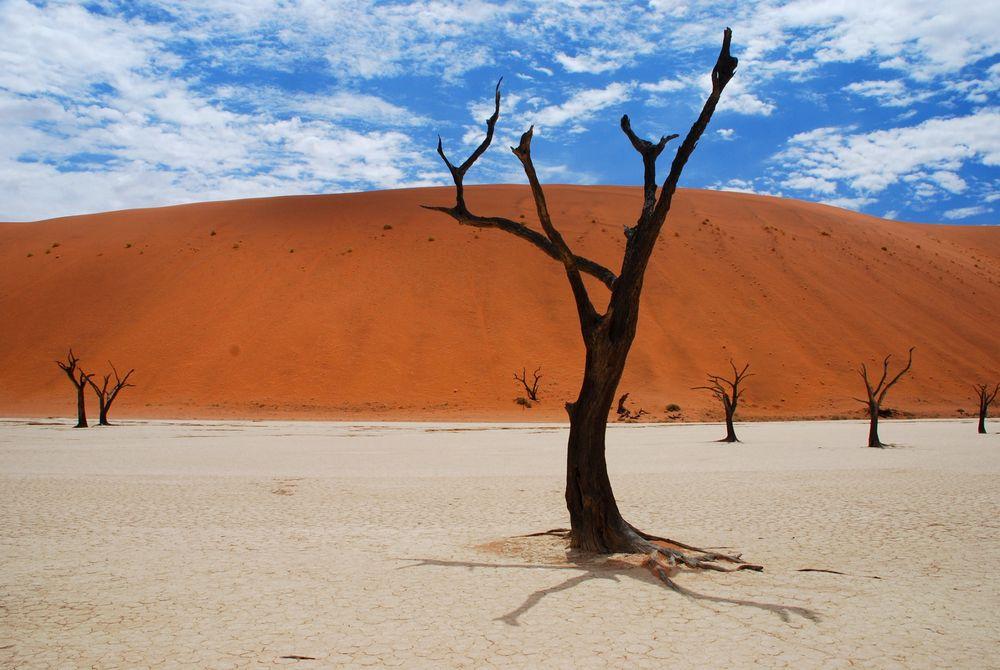 Foto van de dag - Sossusvlei Namibië