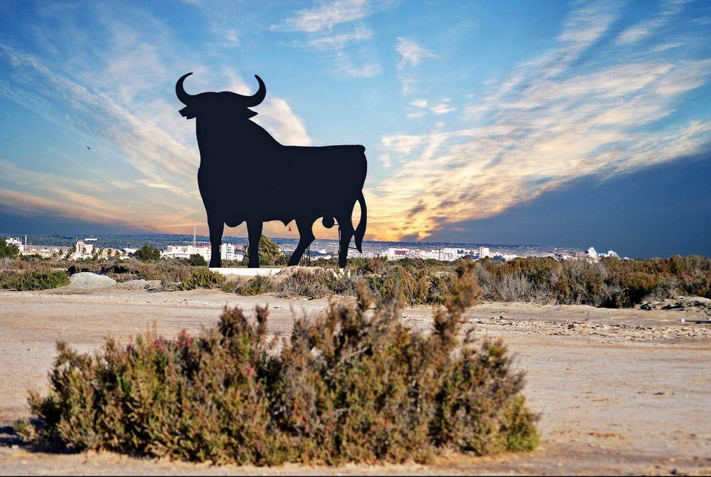 Spanje populair deze winter