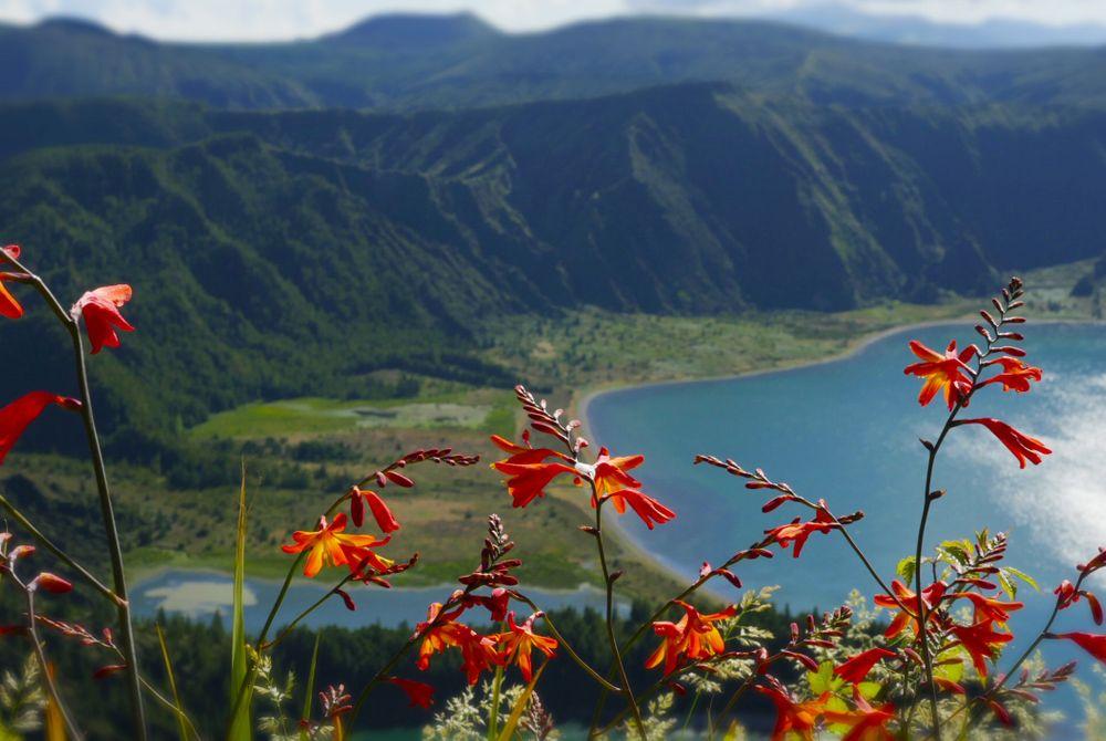 Een rondreis op de Azoren