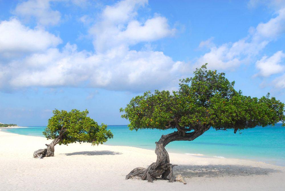 Aruba wordt 100% duurzaam